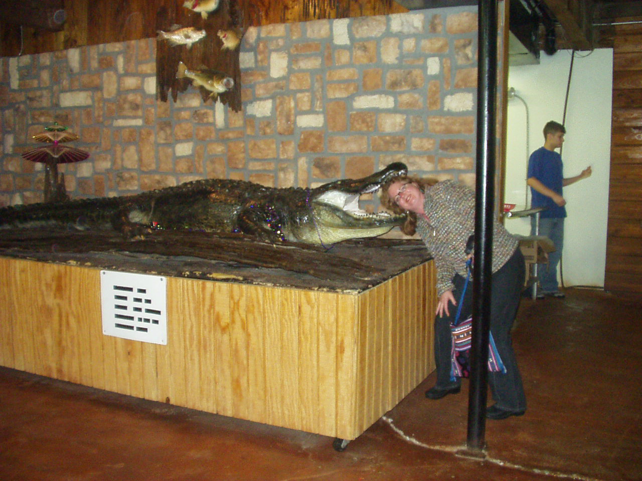 Ellen with her head in an Alligator\'s mouth..!